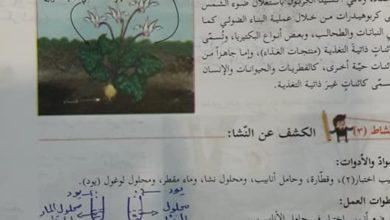 Photo of (علوم 7) حلول أنشطة الكتاب الوزاري لمادة العلوم الصف السابع الفصل الأول