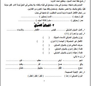 صورة مادة تدريبية علاجية هامة جدا في اللغة العربية للصف التاسع ف1