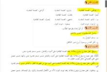 Photo of إجابات (كتاب العربي) – (للصف 8 الثامن) الفصل الثااني