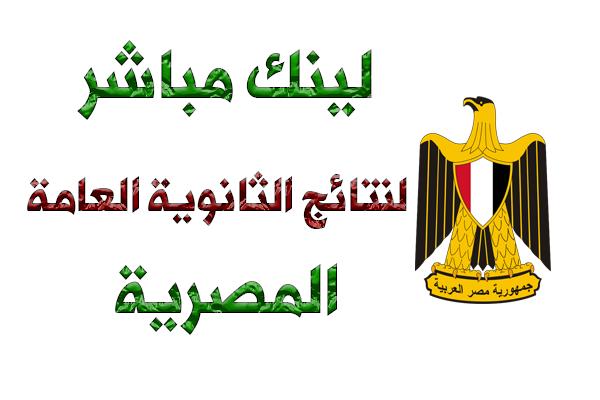 صورة لينك مباشر ومعتمد لنتائج الثانوية العامة المصرية