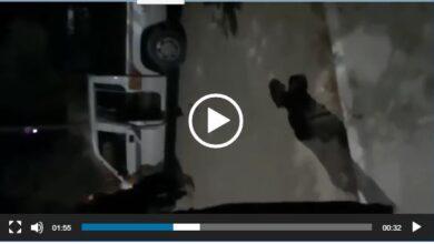 صورة تفاصيل إقتحام وخطف وإطلاق النار داخل أحد المسجد فجراً في خانيونس – فيديو